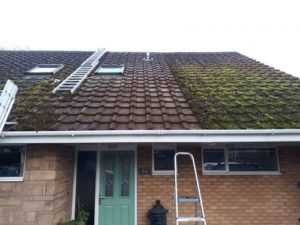 roof cleaning example of results