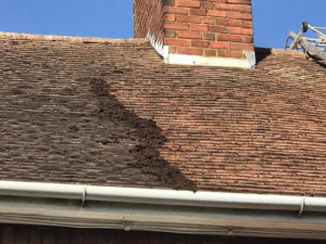 roof cleaning example image 3